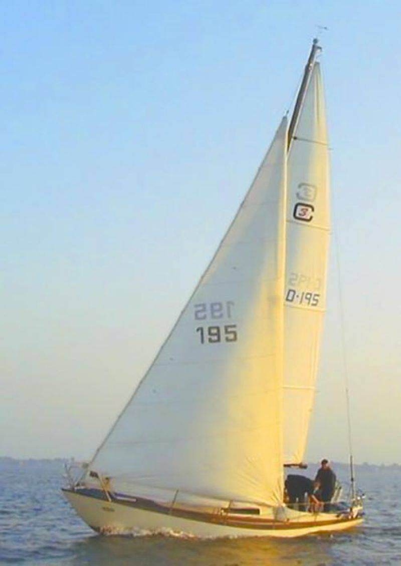Birchwood Commander 31