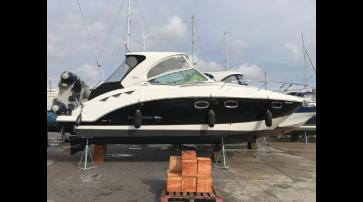 Chaparral 310 Signature