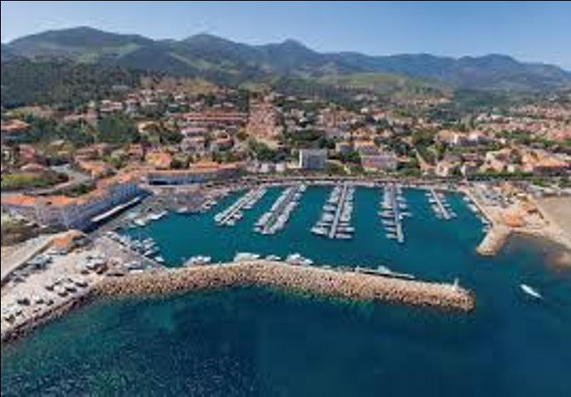 1546426148669_Port_Collioure_1.jpeg