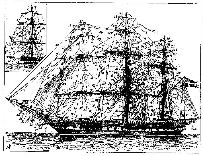 Dizionario marino minimo per neofiti