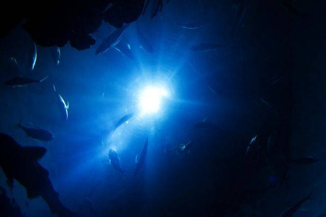 Vulcani sommersi nelle profondità delle acque australiane