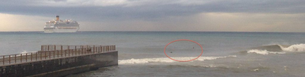 Live da Genova - Surfing