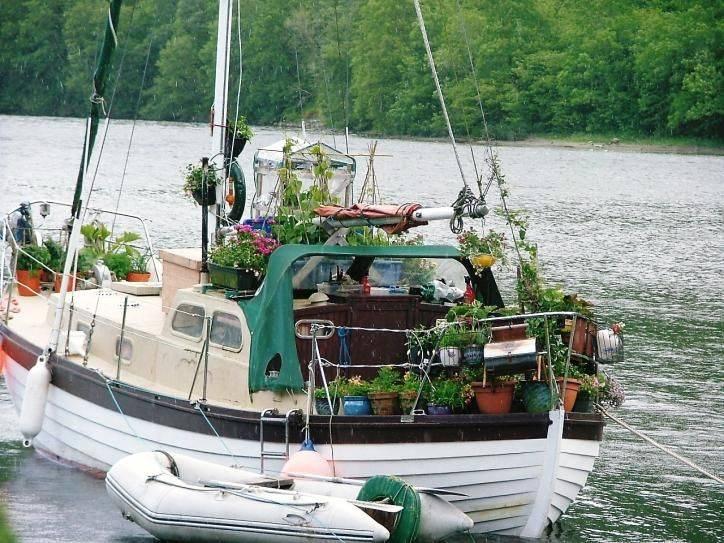 Il vegetariano in barca