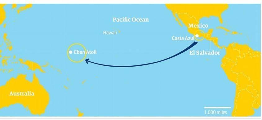 Sopravvivere ad ogni costo: la storia di un naufrago in Pacifico