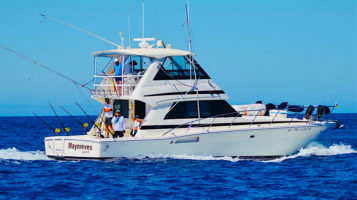 Big-Game-Fishing-Il-Blue-Marlin